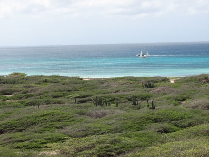 Aruba visit during Caribbean cruise